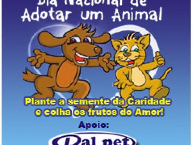 4 de outubro - Dia Nacional de Adotar um Animal