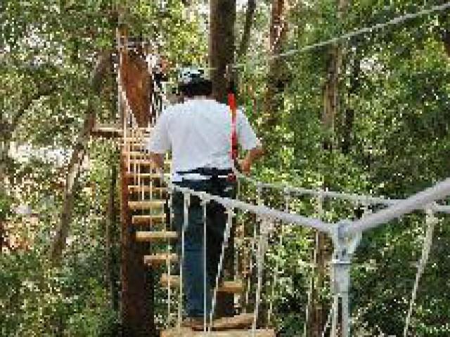Parque da Juventude ganha o maior circuito de arborismo do País