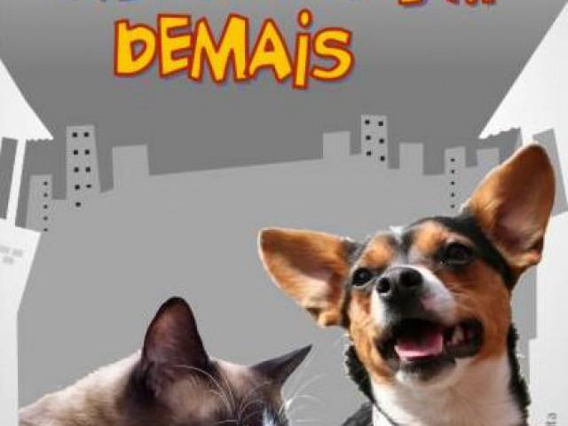 Dia Nacional de Adotar um Animal é comemorado pelo oitavo ano consecutivo
