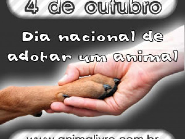 Dia Nacional de Adotar um Animal será comemorado pelo 10.o ano