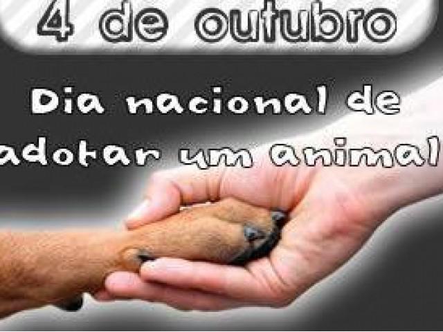 Dia Nacional de Adotar um Animal - Comemoração se faz com atitude!