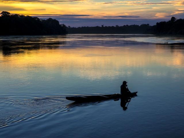 Expedição no sul do Amazonas buscou informações sobre parâmetros populacionais do Mico marcai