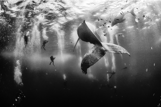 Foto de mexicano vence o prêmio National Geographic Traveler Photo Contest 2015