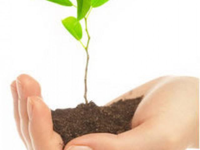 Quem cuida do meio ambiente ganha em saúde e qualidade de vida