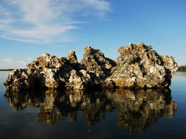Ilha do Bananal é a maior em ambiente fluvial do mundo