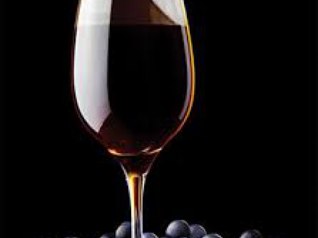 5° Pisa da Uva na Quinta do Olivardo traz aromas e sabores para São Roque (SP)