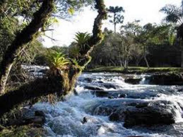 Expedição na Serra da Mocidade, em Roraima, envolve cerca de 70 profissionais